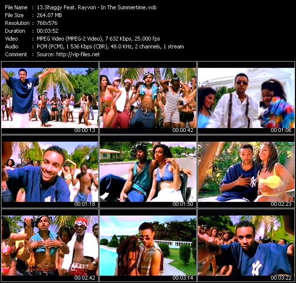 Shaggy Feat Rayvon Video Clip In The Summertime Vob